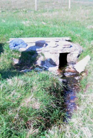 Brighde's Well