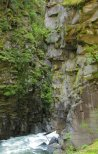 River 'guardian' head