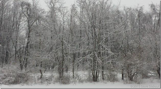 Winter wonderland in Western New Jersey Thursday morning