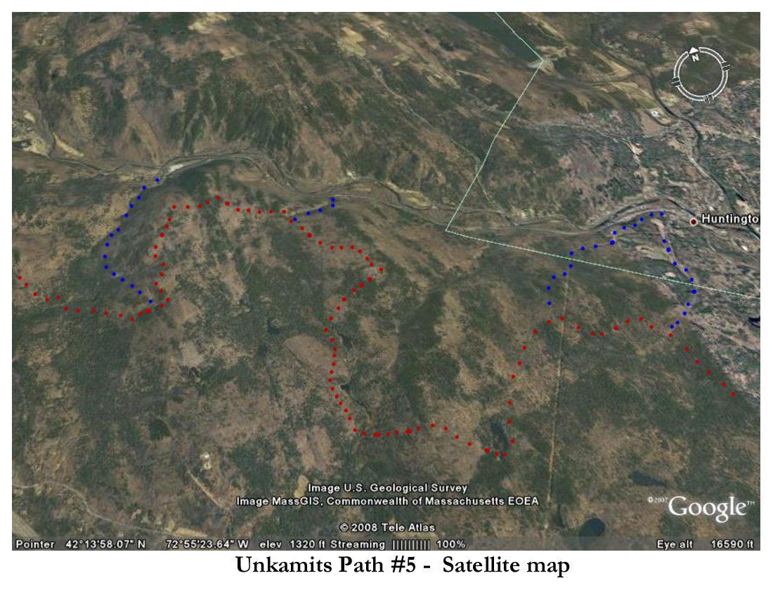 UP #5 - Satellite.jpg