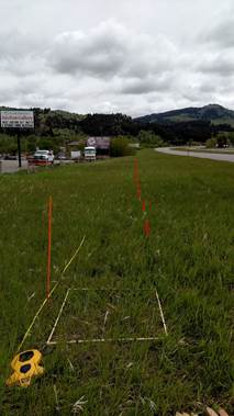 Experimental roadside vegetation testing plots to evaluate roadside vegetation management