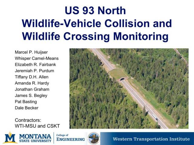 Report, wildlife crossing & collision monitoring US93, Montana