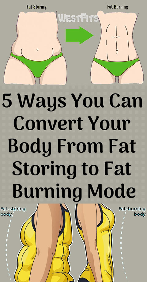 Five Ways You Can Convert Your Body From Fat Storing to Fat Burning Mode