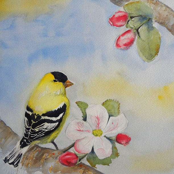 Goldfinch and Apple Blossoms