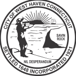 Commission begins charter review