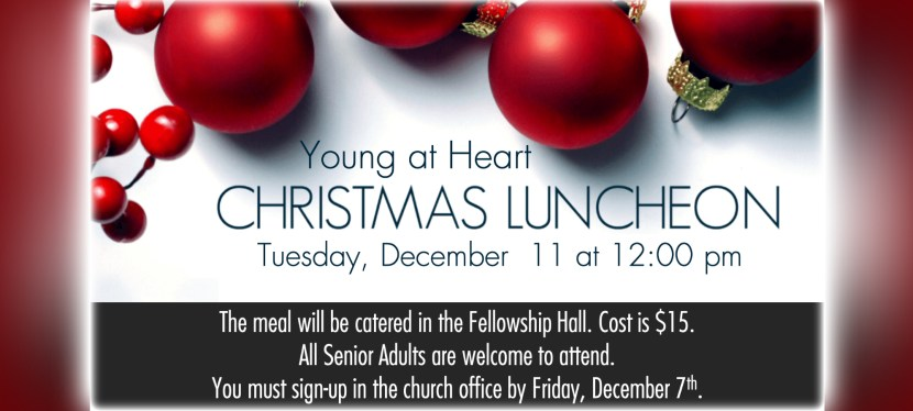 Young at Heart Christmas Luncheon