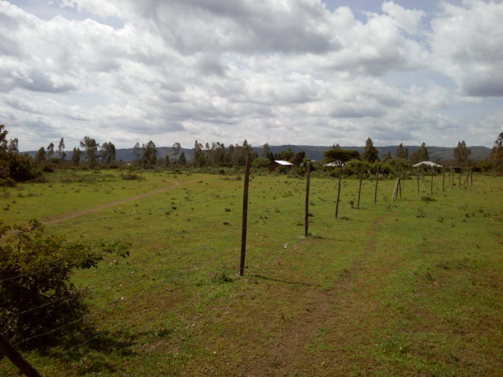 kisumu plots for sale