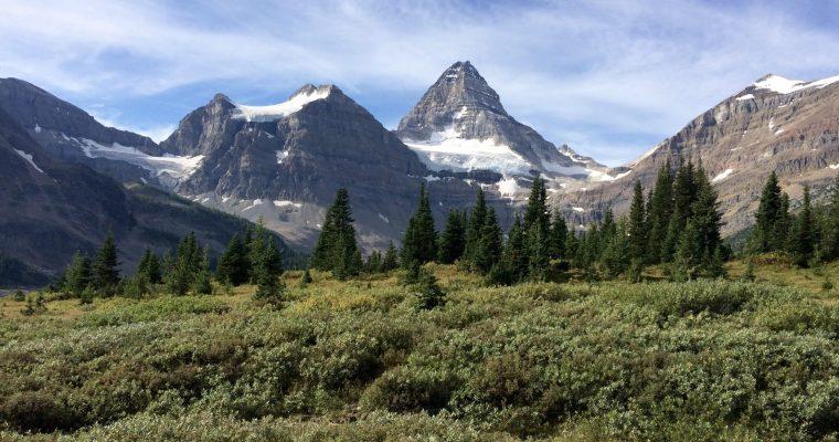 Mt. Assiniboine – Bryant Creek Trail