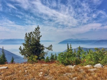 Trees overlooking the wildfire smoke surrounding Kootenay Lake