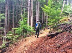Hiking along