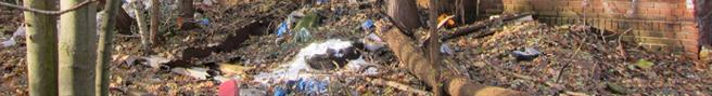 Müllentsorgung kostet Geld
