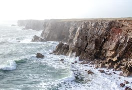 Things to do in Pembrokeshire - Cliffs near St Govan's Head