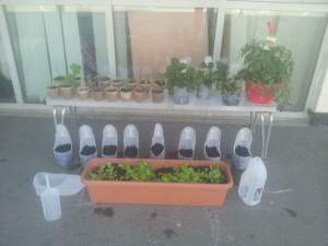 Making planters out of recyclable materials. Photo: Incredible Kirkstall