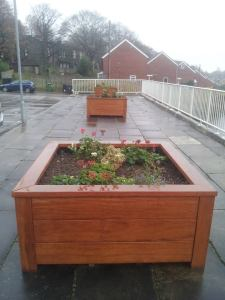 Raised beds outside the Queenswood flats