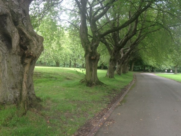 How would you improve Armley Park?