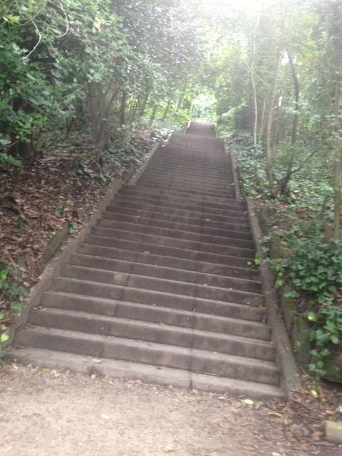 armley park killer stairs