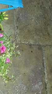 Armley yorkshire stone 4