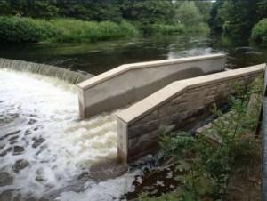 burley mills fish pass