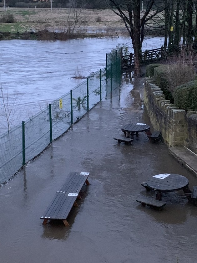 Trees planted upstream to help stop repeat of Kirkstall flooding