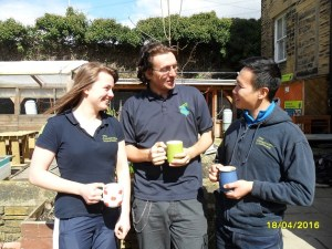 tcv hollybush volunteers