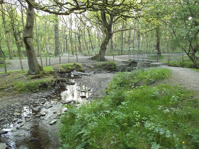 Pudsey woodland racers sought by police