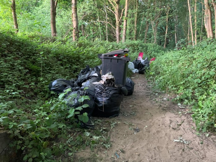 Kirkstall: Community rallies to clean up in aftermath of nature reserve rave
