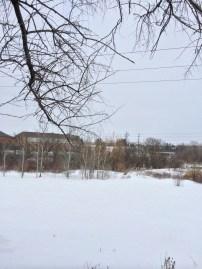 Winter - Country Fields