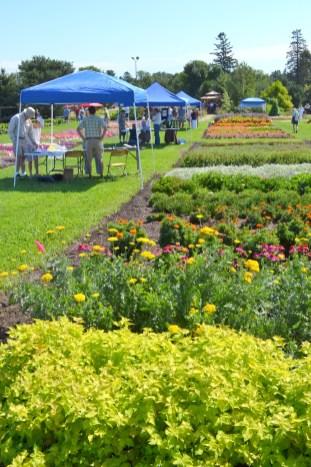 Gardens & Tents