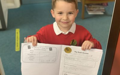 Review Magic In Year 1