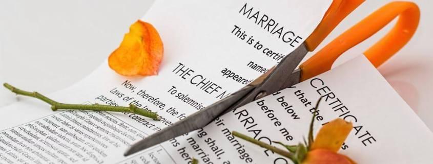Weird Reasons People Have Divorced   Johnsen Wikander P.C. West Michigan Divorce Attorneys