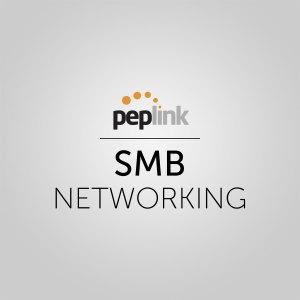 Peplink SMB Networking