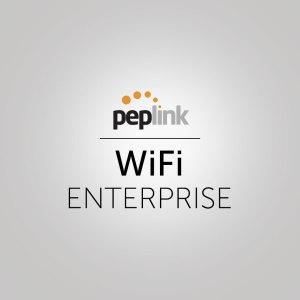 Peplink WiFi enterprise