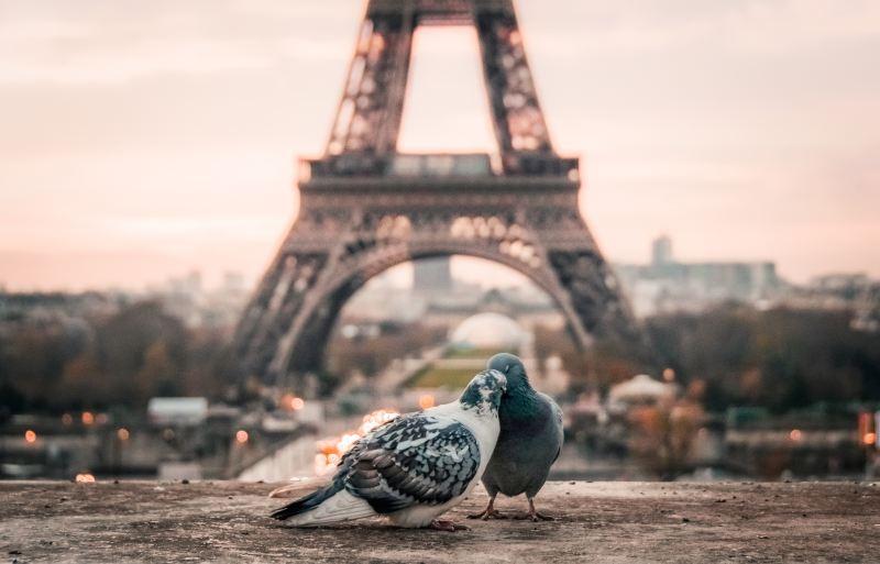 Seinne Fleming Paris