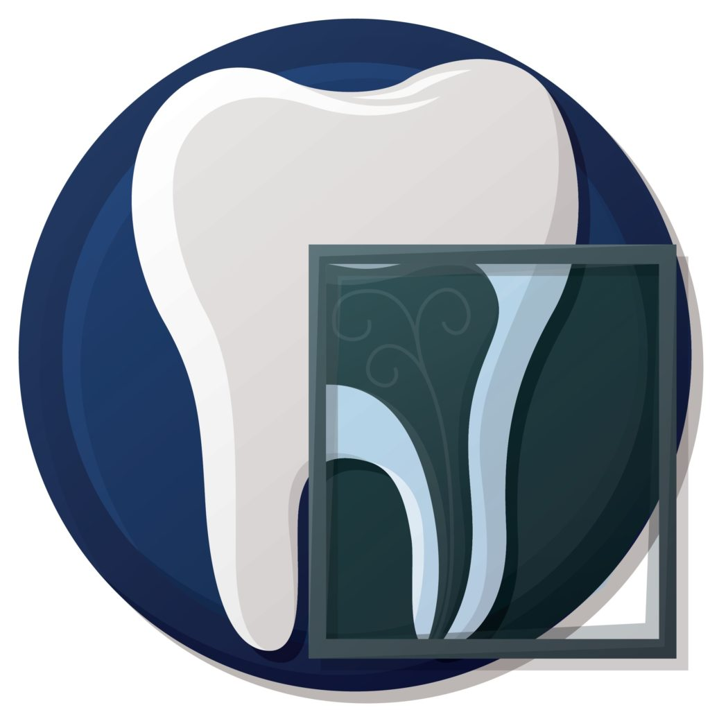 The Truth About Dental X Rays How Often Is Enough
