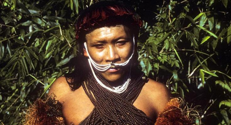 Uncontacted Tribes in West Papua and Misconceptions