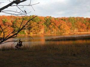 squam creek in autumn