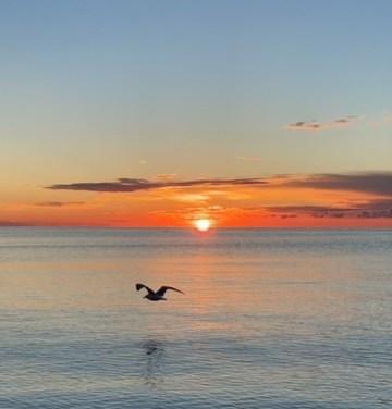 Sunrise in Westport …