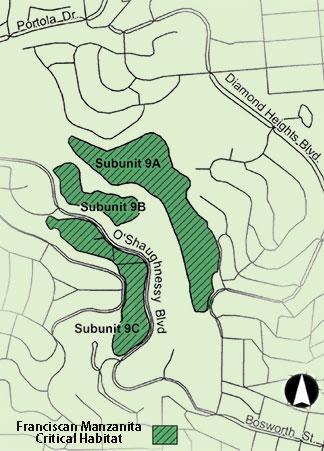 Manzanita habitat