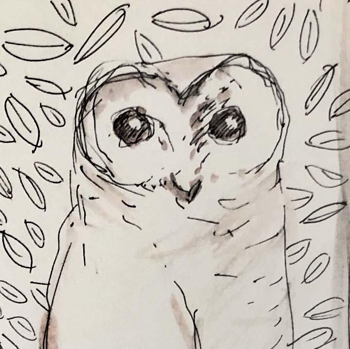 #38   Owl
