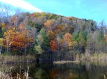 Gorgeous colours at the Brickworks