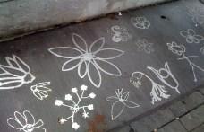 One particularly lovely clump of sidewalk blooms - Stainless steel sidewalk flowers of Walk Here in Bloordale.