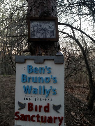 Ben is gone now, but his bird-loving friends continue the tradition of feeding the birds in this hidden spot.