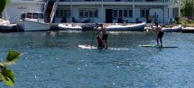 SUP with pup: Ward's Island harbour