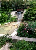 A view of the Lester B Pearson Garden
