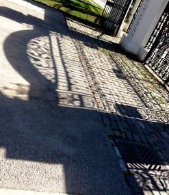beautiful gate shadow on Trinity-Bellwoods entry cobblestones
