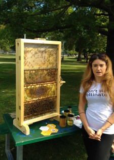 """working bees, and some honey to try. """"Don't hate, pollinate!"""" (Careful about suggesting that!!)"""