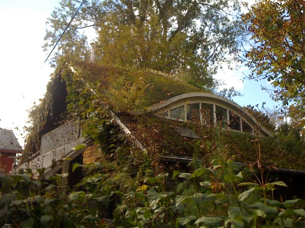 We liked this lovely place's green roof: plants just beginning to cover the support mesh.