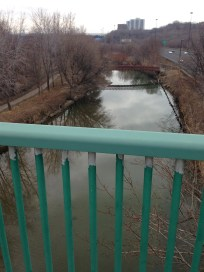 Looking up the mighty Don River from Riverdale pedestrian bridge.