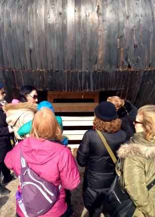 Winter Stations: In the Belly of a Bear - Heather and Skylar ventured in; Elizabeth decided against it (too many of those aforementioned rambunctious visitors!)