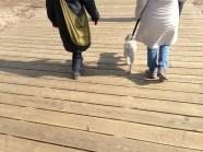 Skylar, Ozzie and Vicki walk the boardwalk